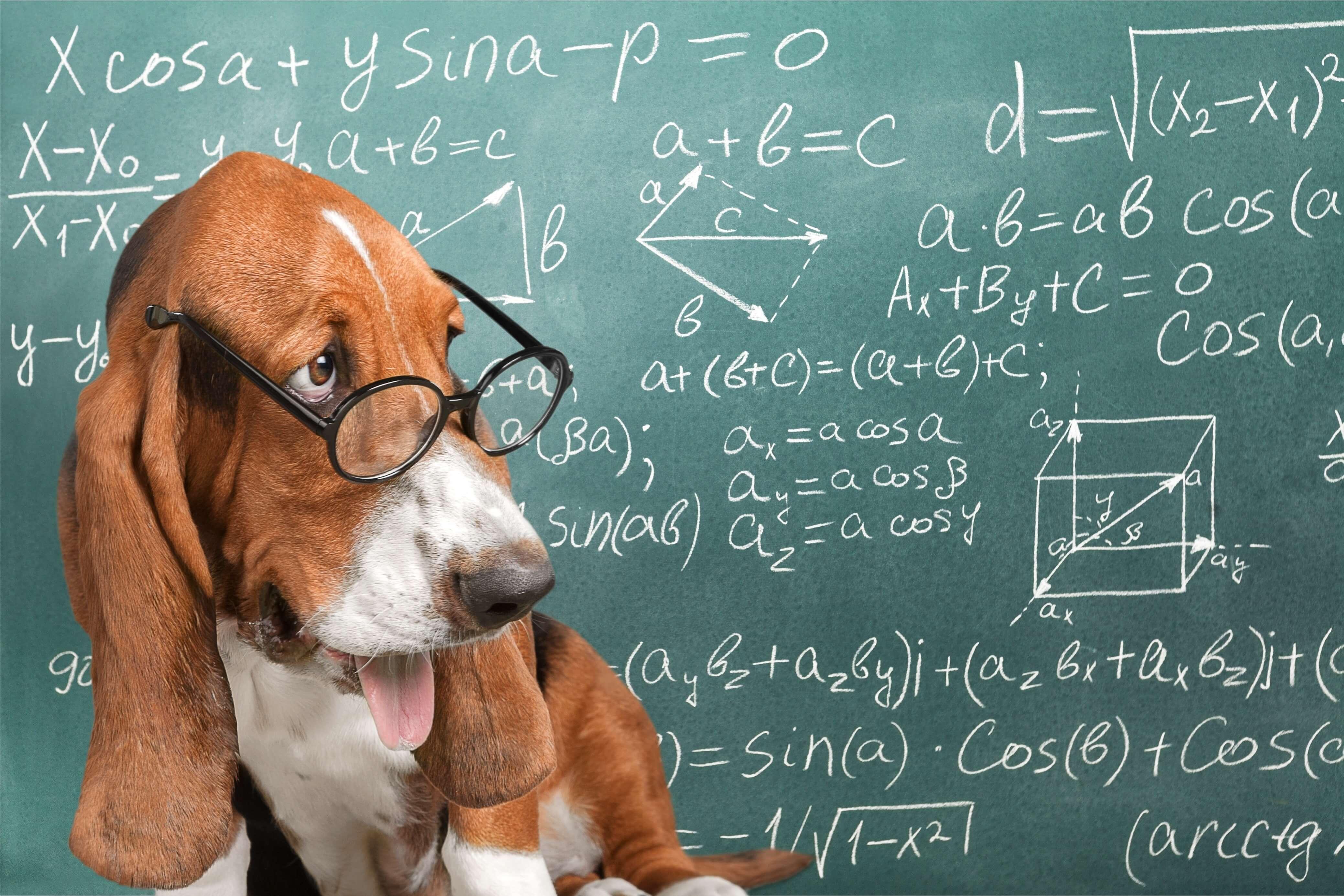 機械学習 ディープラーニング 統計 確率 基礎