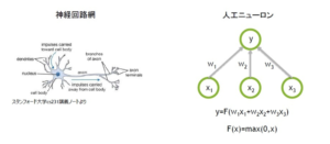 【引用】ビジネス+IT ニューラルネットワークの基礎解説:仕組みや機械学習・ディープラーニングとの関係は
