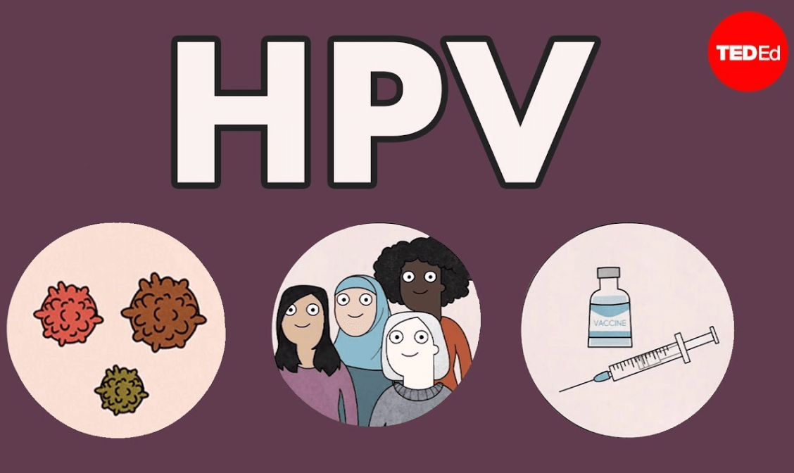 TED HPV