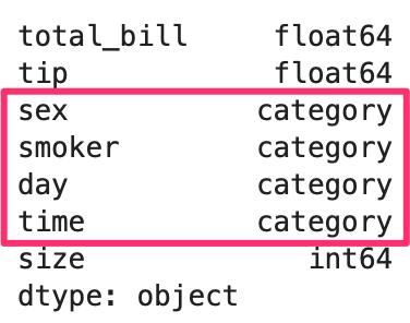 python pandas dataframe データ参照 categoryの列を示している表