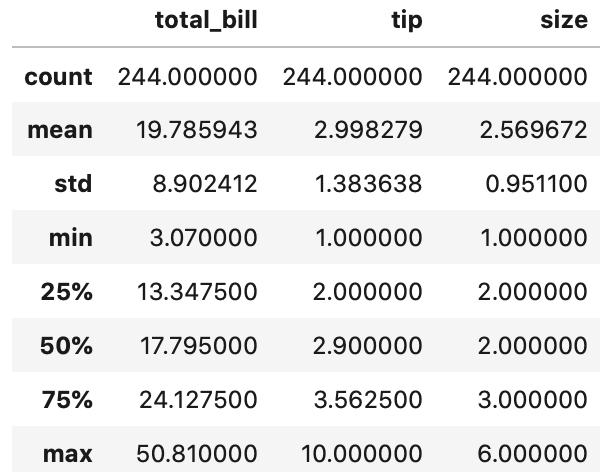 Python pandas データ参照 数値データの統計量をdescribeメソッドで参照した表