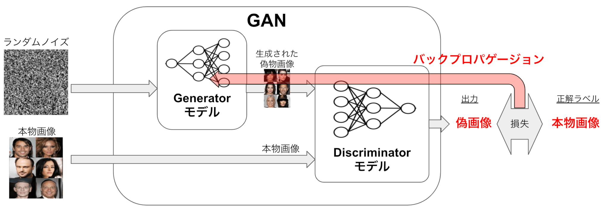 GANの学習の仕組み詳細 Gはノイズから画像を出力できるように、転置畳み込み層などを用いたニューラルネットワークを設定する。  Dは画像から本物/偽物のラベルを出力できるように、畳み込み層を用いたニューラルネットワークを設定する。(こちらは普通のCNNモデルと捉えても問題ない)  Dの出力と正解ラベル(偽画像か本物画像か)の損失を計算し、その損失をDとGにバックプロパゲーションを行うことによりGとDのネットワークの学習を行う